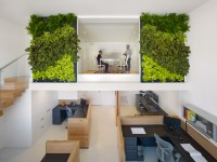 office-vertical-garden-interior-decor